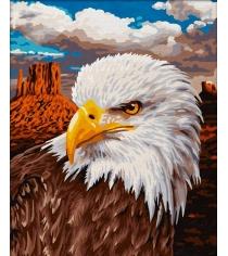 Раскраска по номерам Schipper Белоголовый орлан 9240665...