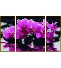 Раскраска по номерам Schipper Триптих Орхидеи 9260603