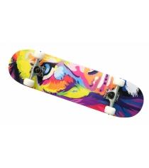 Скейтборд клен цвет C MP3108-11C Moove&Fun