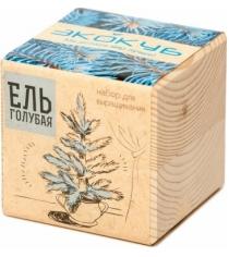 Набор выращиваем растения Экокуб голубая ель артикул ECB-01-01