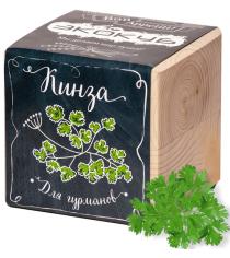 Набор выращиваем растения Экокуб кинза артикул ECB-02-07