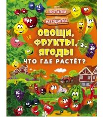 Книга овощи фрукты ягоды что где растёт
