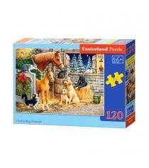 Пазл собрание 120 элементов Castorland B-13340