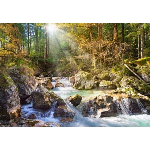Пазл лесной ручей 2000 деталей Castorland Р67660