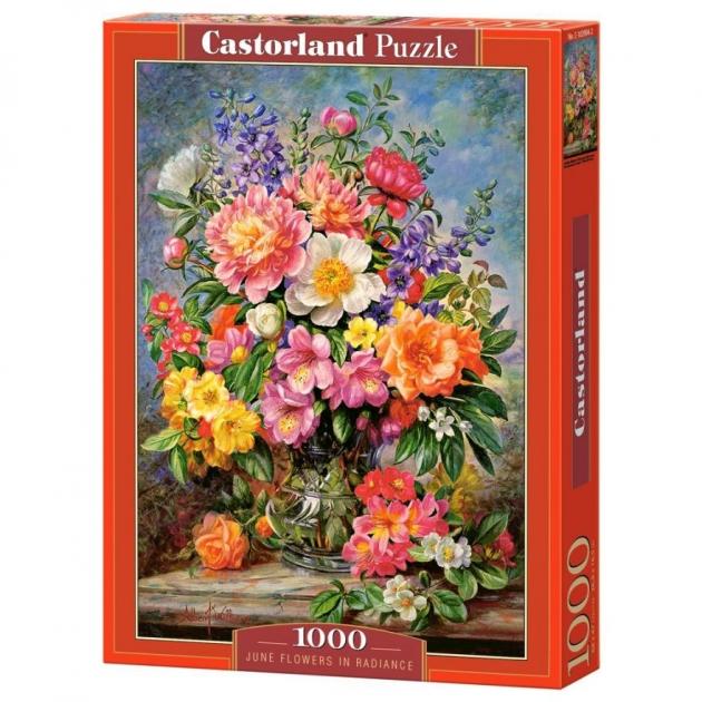Пазл цветы в сиянии 1000 элементов Castorland Р92442