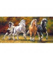 Пазл лошади рожденный бежать 4000 элемента Castorland C-400119