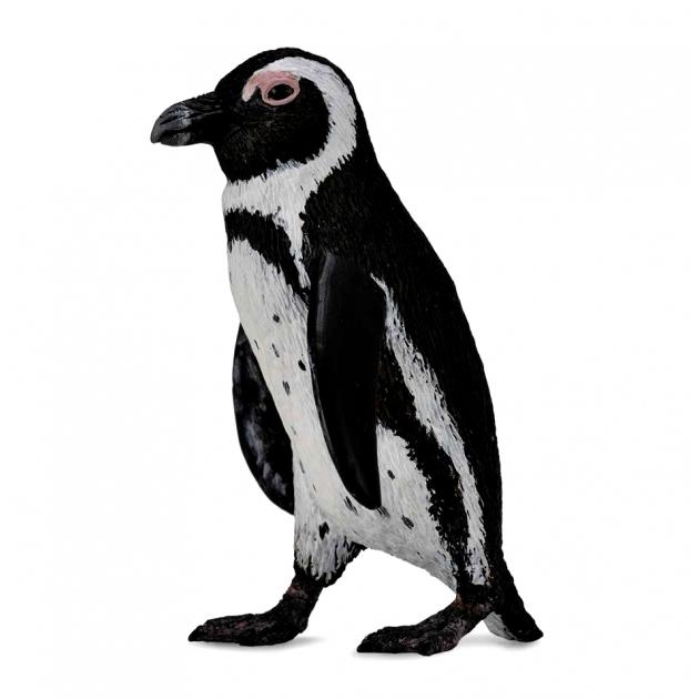 Южноафриканский пингвин s Collecta 88710b