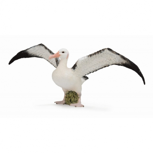 Странствующий альбатрос l Collecta 88765b