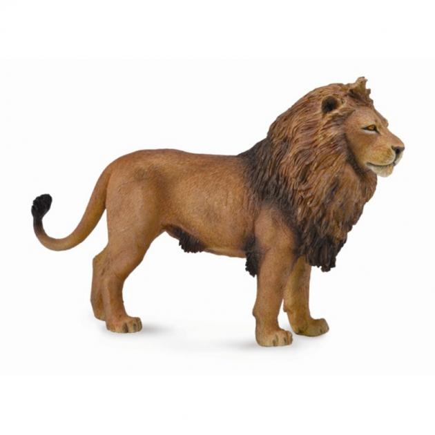 Лев африканский l Collecta 88782b