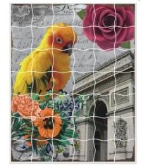 Пазл стикер самоклеющийся Color kit волнистый попугайчик XD11