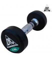 Гантели пара DFC POWERGYM 2 кг DB002-2