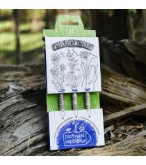 Итальянские травы набор графитных растущих карандашей Эйфорд RK-01-03-03