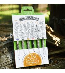 Прованские травы набор цветных растущих карандашей Эйфорд RK-02-06-08