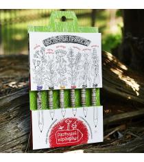 Восточные пряности набор цветных растущих карандашей Эйфорд RK-02-06-06