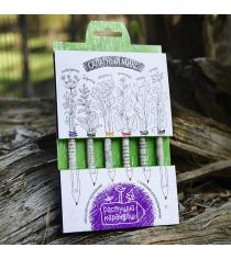 Салатный микс набор цветных растущих карандашей Эйфорд RK-02-06-02