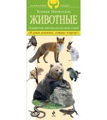 Животные определитель животных русских лесов и полей Митителло К.Б.