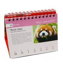 Редкие животные красная книга серия подарочные издания календари на 52 недели Скалдина О.В., Слиж Е.А.