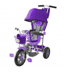 Трехколесный велосипед Galaxy Лучик-1 фиолетовый 5598...