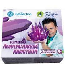 Набор для выращивания аметистовый кристалл Intellectico 505