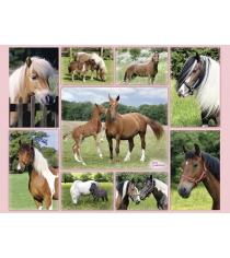 Пазл Ravensburger Галерея лошадей xxl 300 шт 13174
