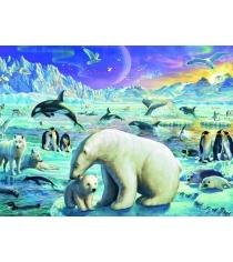 Пазл Ravensburger Полярные животные xxl 300 шт 13203