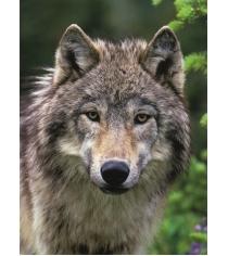 Пазл Ravensburger Волк 500 шт 14354