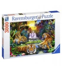 Пазл Ravensburger Тигры у воды 3000 шт 17057