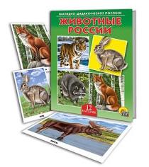 Наглядно дидактическое пособие животные россии Рыжий кот пд-6898