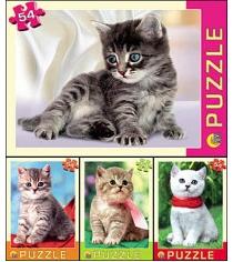 Пазлы котята 54 элемента Рыжий кот п54-3663