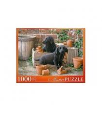 Пазл щенки черного лабрадора 1000 элементов Рыжий кот АЛМП1000-6908
