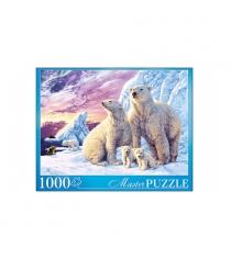 Пазл медведи заполярья 1000 элементов Рыжий кот МГМП1000-6907