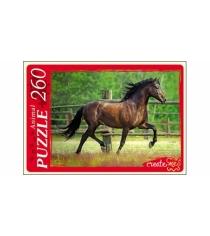 Пазлы 260 элементов изящная лошадь Рыжий кот У260-7257