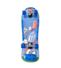 Скейтборд Action SHЕ-55