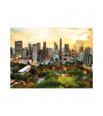 Trefl закат в бангкоке 3000 элементов 33060
