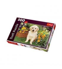 Trefl лабрадор в саду 500 элементов 37160