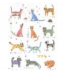 Открытка Turnowsky Кошки MO6330