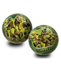 Мяч Unice Ниндзя Черепашки UN 2553