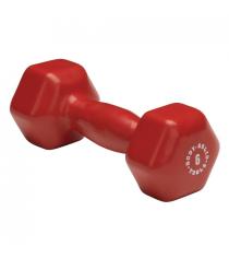 Гантель Body Solid 2,7 кг BSTVD6