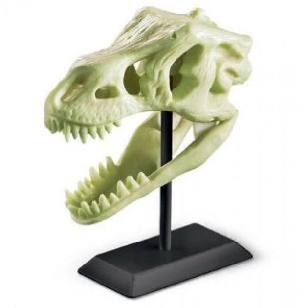 Палеонтологический музей 4M 00-03356