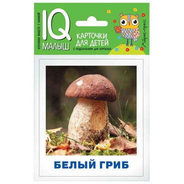 Обучающие карточки Айрис - пресс умный малыш грибное лукошко артикул 64292