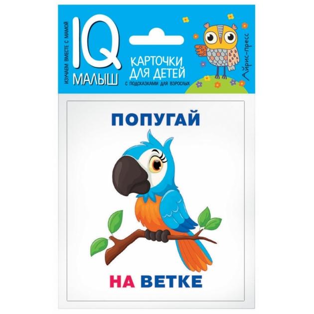 Обучающие карточки Айрис - пресс умный малыш кто где находится? артикул 64872